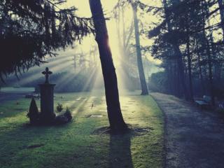 Cemetery-883417_960_720